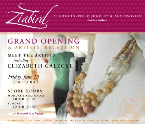 Ziabird reception Invite June 19
